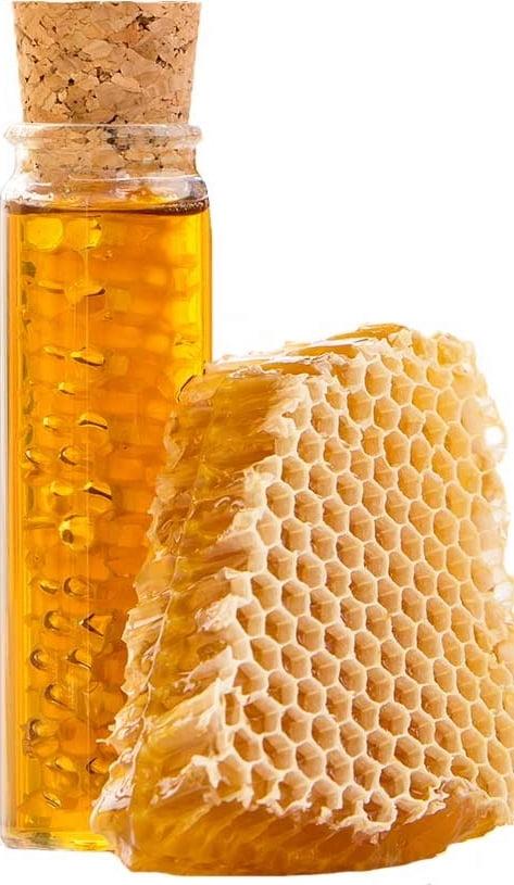 pravý lesný med